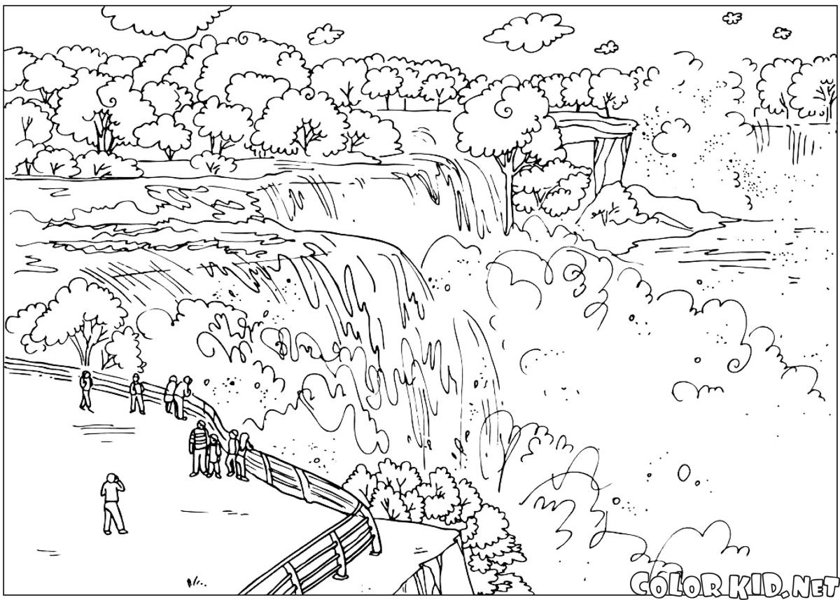 Coloring page The United States